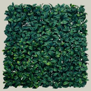 10-laurel-amarillo-02