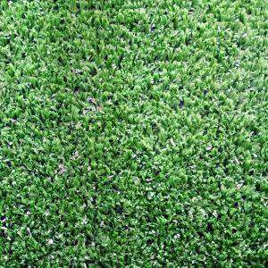 16-pasto-alfombra-02