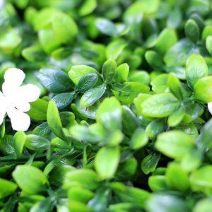 flor-de-lis-2